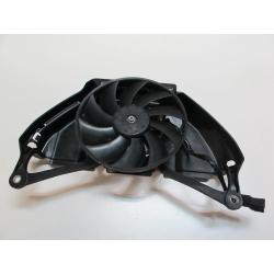 Ventilateur 600 Hornet 07/10