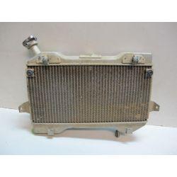 Radiateur d'eau 450 LTR 08