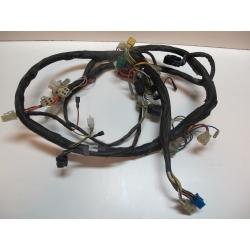 Faisceau électrique 650 COMET GTR