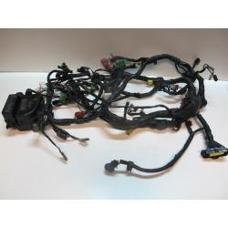 Faisceau électrique 1500 GL